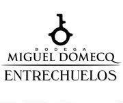 33.MIGUEL-DOMECO
