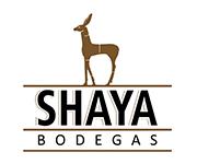 marcas web_bod.shaya