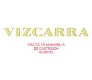 marca_web_vizcarra