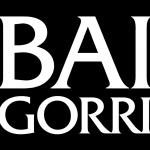 logo baigorri